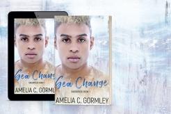 Sea-Change-3d-mockup
